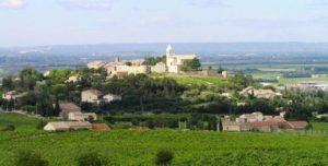 Wijnbericht Vino - Foto 3